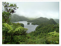 fresh water lake dominica tours