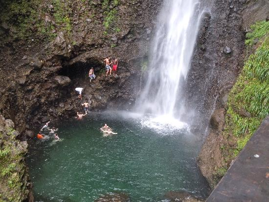 Dominica Tours